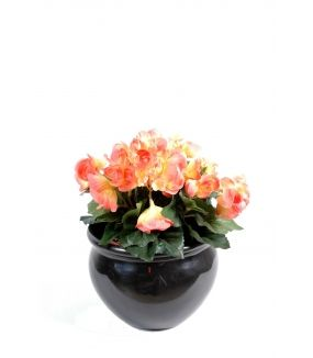 Begonia artificiel*54 MINI