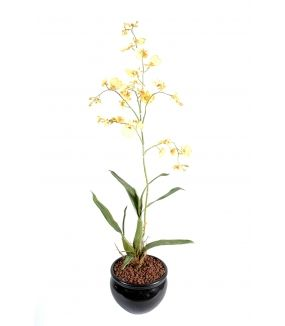 Oncidium artificiel GEANT