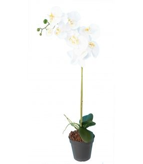 PHALAENOPSIS Artificielle 9