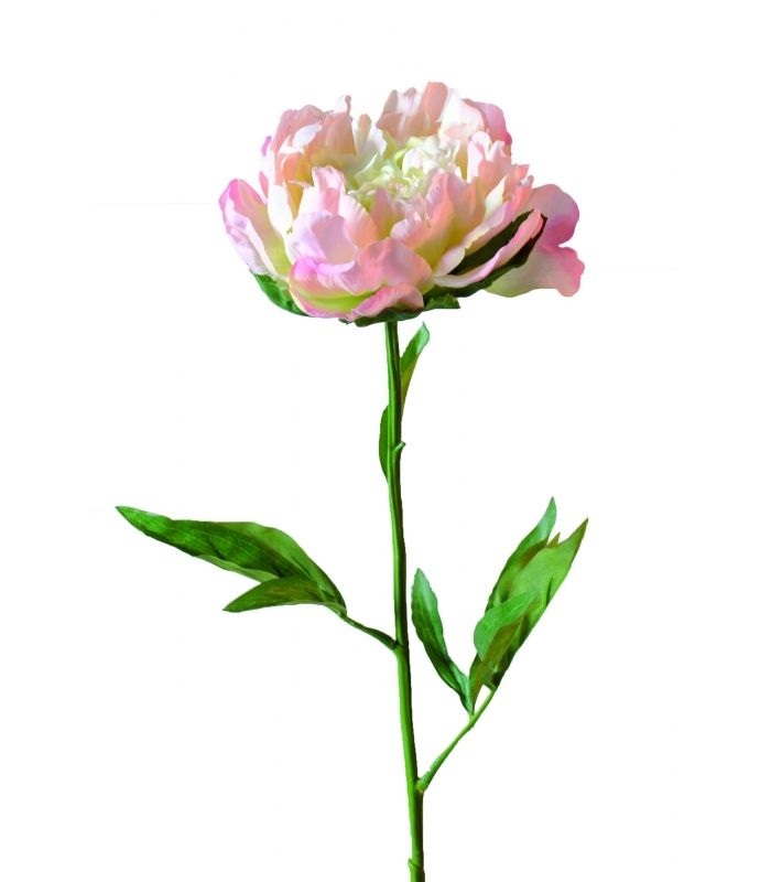 Pivoine artificielle DIAM 14