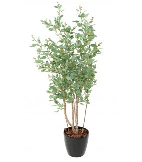 EUCALYPTUS Artificiel TREE BAIES